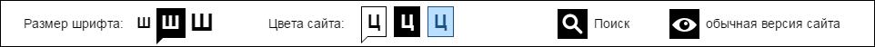 Пример панели версии для слабовидящих